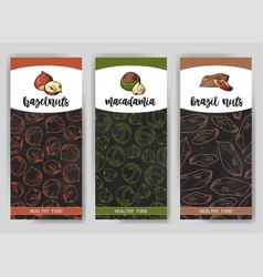 Natural nuts and seeds template hand drawn vector
