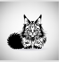 portrait a cat with a predatory gaze vector image