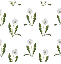 seamless pattern with dandelions vector image