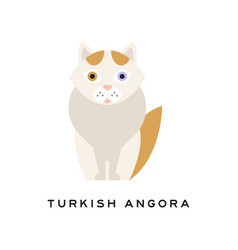 turkish angora cat cartoon domestic animal with vector image