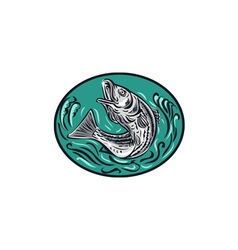 Rockfish Jumping Color Oval Drawing vector image vector image