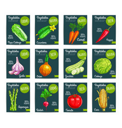 vegetables price tags set vector image