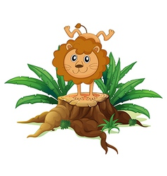 A young lion doing a handstand above a wood vector image