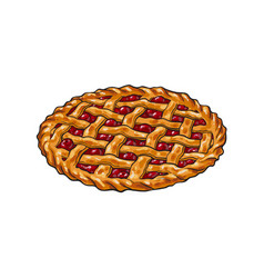 Hand drawn cherry pie thanksgiving symbol food vector