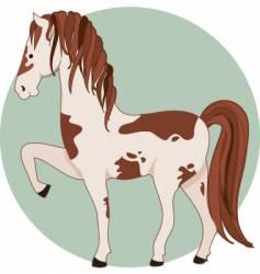 Horse pinto vector