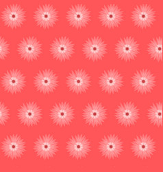 red pink flower cornflower isolated on white vector image