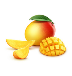 whole and sliced mango cubes vector image