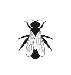bee symbol vector image
