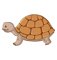 Brown tortoise crawling on white background vector