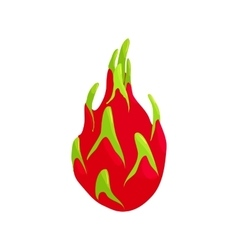Dragon fruit icon cartoon style vector