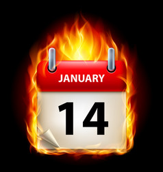 fourteenth january in calendar burning icon on vector image