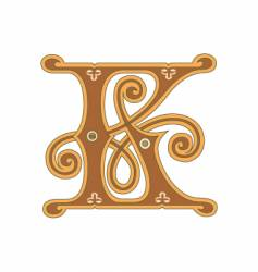 golden letter k vector image