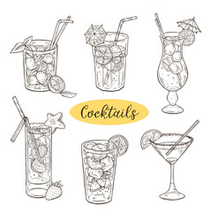 Hand drawn cocktails vector
