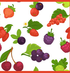 berries organic food seamless pattern farm product vector image