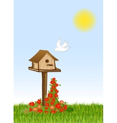 Bird and starling house vector image