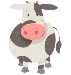 cute spotted cow or calf vector image