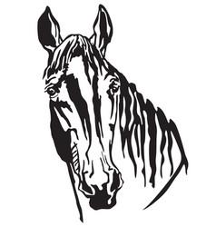 Decorative portrait of trakehner horse-2 vector
