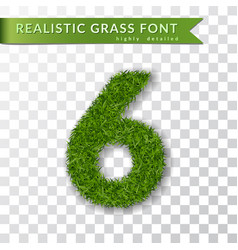 Grass number six green number six isolated vector