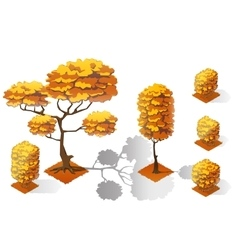 Isometric plants forest collection set Fall trees vector image