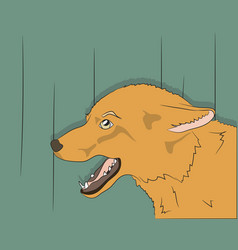 portrait of fox on green background vector image
