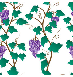 seamless pattern of grape plant vector image