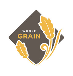Whole grain organic cereals logo wheat symbol vector