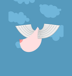 Boobs with wings flying flying tit sorority logo vector