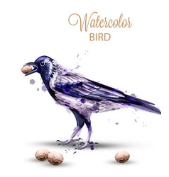 crow with a nut watercolor fall season vector image