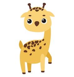 cute giraffe on white background vector image