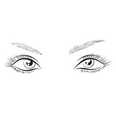 female eyes drawing long eyelashes vector image