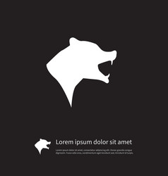 Isolated wild icon grizzly element can be vector