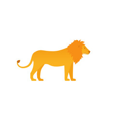 lion zoo animal in flat design vector image
