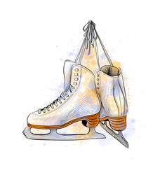 pair of figure ice skates from a splash of vector image