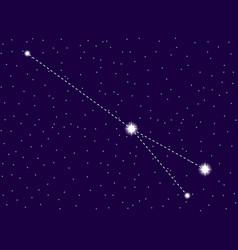sagitta constellation starry night sky zodiac vector image