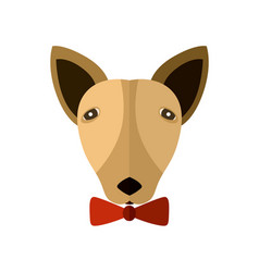 bull terrier head icon in flat design vector image