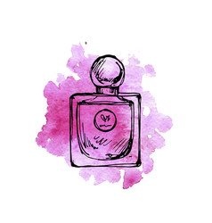 drawing perfume bottle vector image
