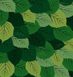 Green leaves carpet vector image