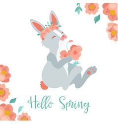 hello spring card with rabbit vector image