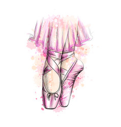 Legs of ballerina in ballet shoes from a splash of vector