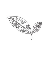 one continuous line drawing cute tropical vector image