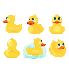 rubber duck bath yellow cute toys water funny vector image