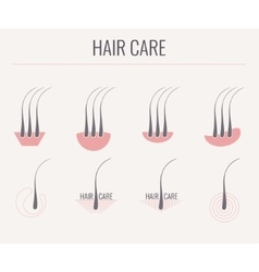 Hair care icon set vector image vector image