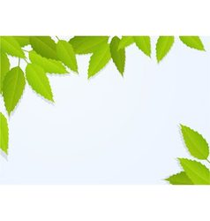 Nature background with tree leaves vector image vector image