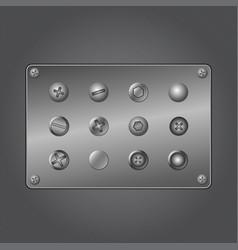 metal screws vector image vector image
