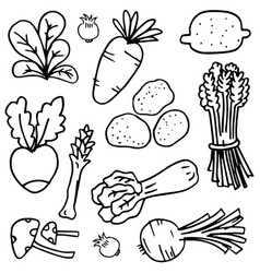 Doodle of vegetable hand draw object vector