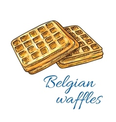 Belgian waffles sketch icon Patisserie emblem vector