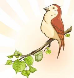 Bird on the branch vector