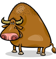 Bull or buffalo cartoon vector
