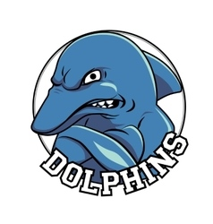 Dolphin logo mascot head with a title dolphins vector