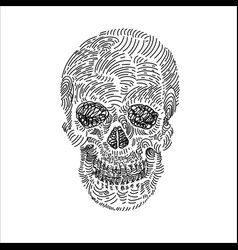drawing of skull on white vector image